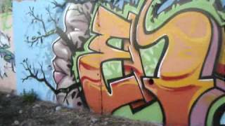 preview picture of video 'Graffiti: El Vendrell Dae, Limbo, Wem y Fosa'