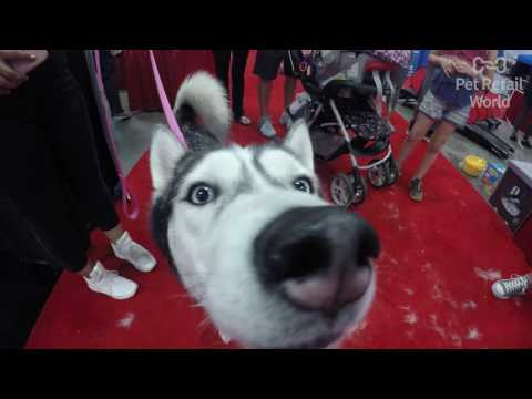 Pet Retail World at the World Dog Expo 2017