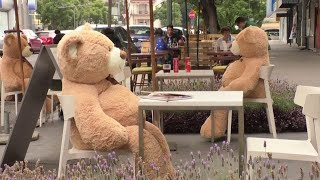 video: Watch: Giant cuddly teddy bears help customers socially distance