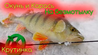 Последний отчет о рыбалке в крутинке