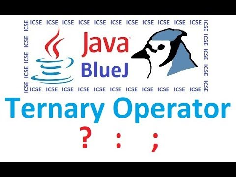 Ternary / Conditional Operator in Java through BlueJ
