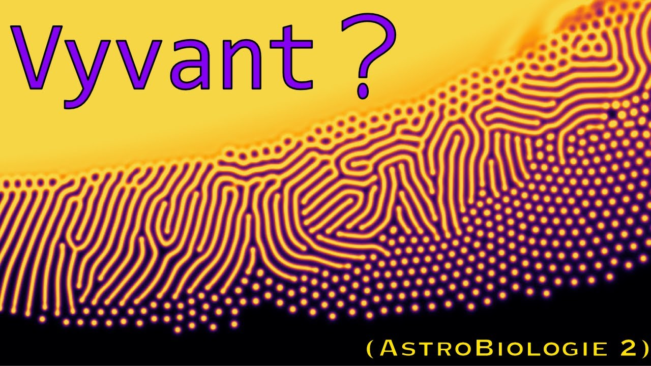 LYFE : la Thermodynamique de la Vie (Astrobiologie 2)