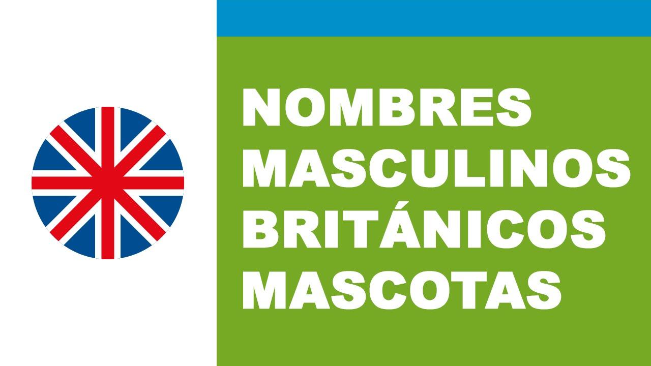 Nombres masculinos británicos - los mejores nombres para mascotas - www.nombresparamimascota.com