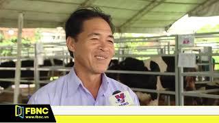 Tổ chức lại nghề chăn nuôi bò sữa tại TPHCM   FBNC