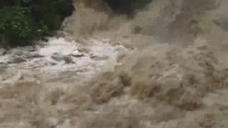 preview picture of video 'Hochwasser im Liebethaler Grund bei Pirna 7.08.2010'