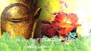 Bienvenidos al Mundo del Relax -Oxygen Garden reiki