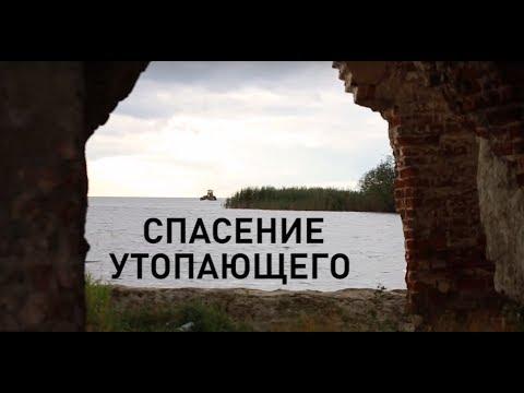 """Волонтерское движение Вологодской области: фонд """"Крохино"""""""