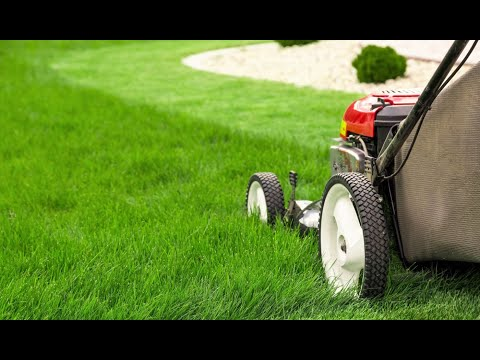 How To Properly Mow A Lawn