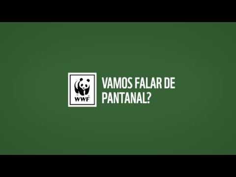 Vamos Falar de Pantanal - Evento Completo