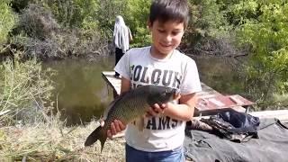 Платная рыбалка в саратовской области