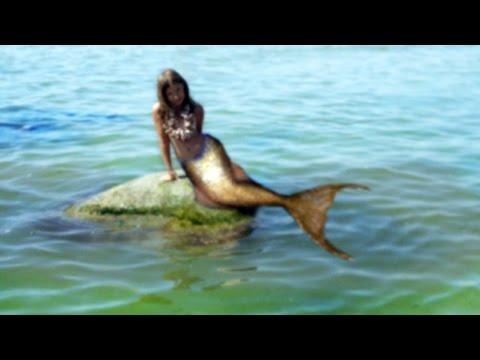 Морской бой астрология