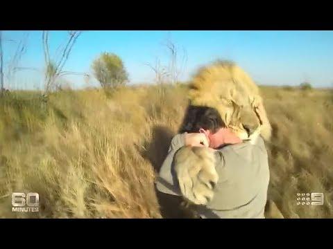 Lion Man - Kevin Richardson: