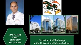 Interpretation of Wrist MRI: Detailed Anatomy