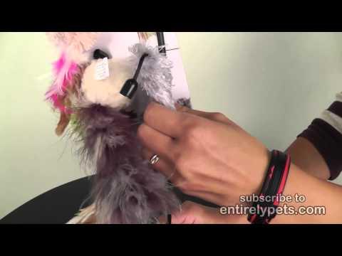 Petlinks Switch Up Video