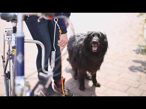 Fahrradleine für Hunde
