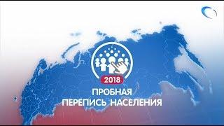 В России стартовала Пробная перепись населения
