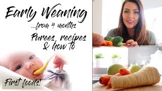 HOW TO WEAN YOUR BABY TO SOLIDS FROM 4 MONTHS | FIRST FOODS | PUREE RECIPES | MAMA REID