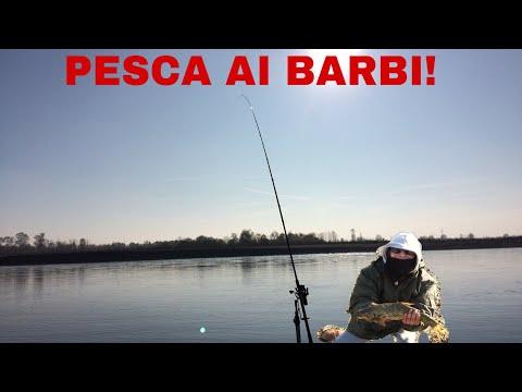 Fare un testimone segnare per pesca invernale