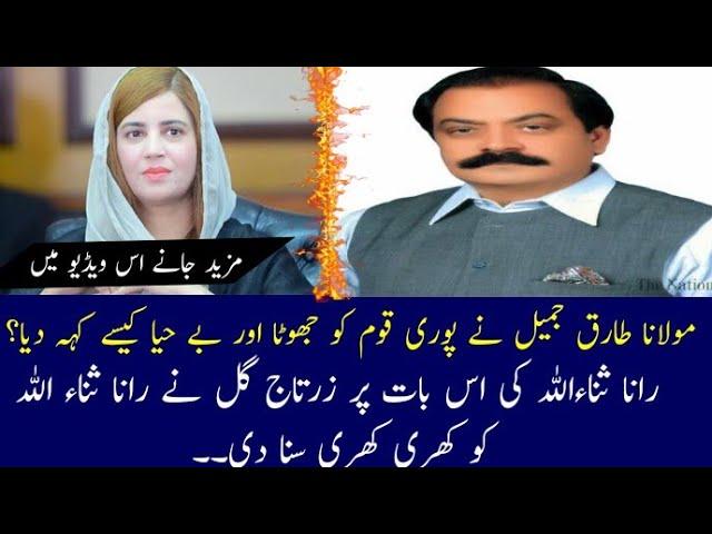 Zartaj Gul Fire On Rana Sanaullah Molana Tariq Jameel 24 Upto Date News Pakistan Ki Awaz