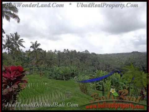 1.000 m2 Lahan  view sawah gunung dan tebing di Ubud TJUB424
