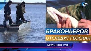 Рыбоохрана будет отслеживать браконьеров с воздуха