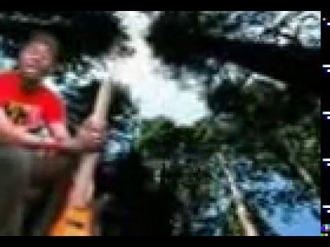 FADAR BEGE (FARKON MAFADI 2)