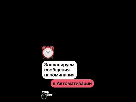 Видеообзор Wepster