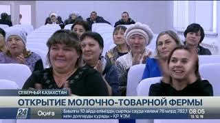 Молочно-товарную ферму открыли в посёлке Рублёвка в СКО