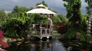 Japanischer Traumgarten – Koi und Skulpturen