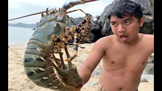 Primitive Technology with Survival Skills Catch giant Lobsters in deserted island