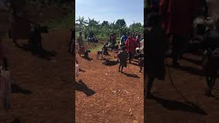 preview picture of video 'Kayonza local market (Rwanda)'