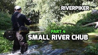 Small river chub (4 of 4) - (video 209)