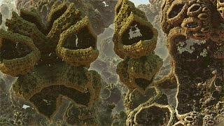 Alien Land - A Fractal Journey  HD 1080p/60fps