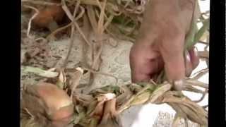 Accessing Wisdom: Onion And Garlic Braiding