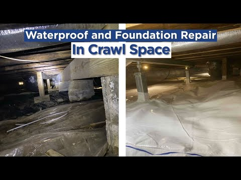 Mold, Moisture, and Structural Problems in Beaver Dam, KY