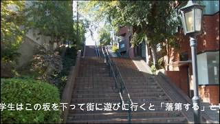 新潟観光旅行新潟市どっぺり坂
