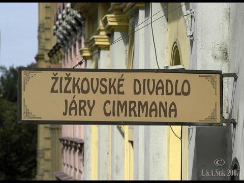Jára Cimrman - 40 let Divadla Járy Cimrmana aneb Ze hry do hry (2007) (divadelní záznam)