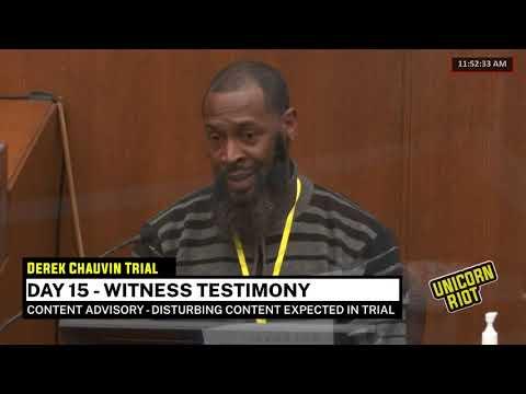 Chauvin Trial Day 15 - Witness Testimony pt 2