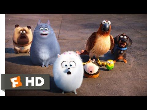 The Secret Life of Pets - Secret Route Scene (4/10) | Movieclips
