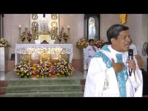 2019 Feb 2 San Pedro Calungsod Parish, Danao City, Cebu