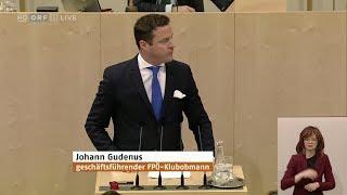 Johann Gudenus - Entlastung Für Österreich (Steuerreform) - 30.1.2019