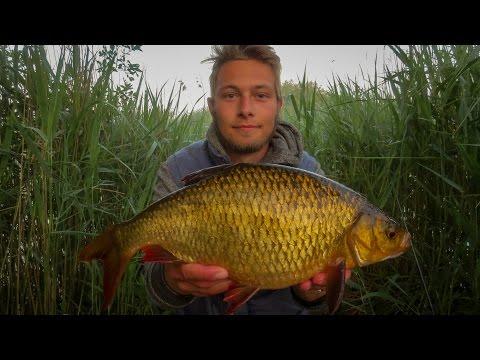 Morgenfiskeri efter store rudskaller