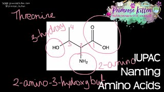 Naming Amino Acids Using IUPAC Systematic Nomenclature - Revision for A-Level Chemistry