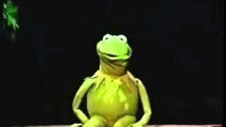 Muppet Voice Comparisons - Kermit the Frog!