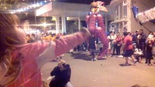 preview picture of video 'Carnaval de vedia 2014'