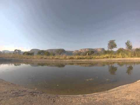 A clip of an approaching elephant captured on a GoPro camera against the backdrop of mountains at Marataba.