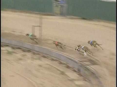 Race 62