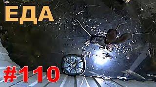 """#110. Реалити Шоу """"ALCARATZ"""". ДОМ 2 - Крысы. Еда"""