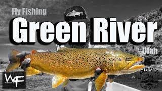W4F - Fly Fishing Green River - Utah