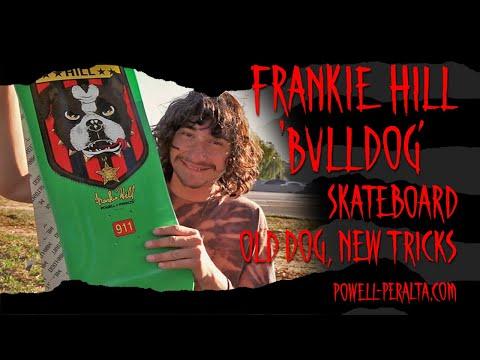 'Old Dog, New Tricks' - Frankie Hill Bulldog